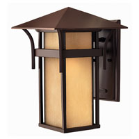 Hinkley Lighting Harbor 1 Light Outdoor Wall Lantern in Anchor Bronze 2574AR-DS photo thumbnail