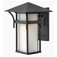 Hinkley Lighting Harbor 1 Light Outdoor Wall Lantern in Satin Black 2574SK-DS photo thumbnail