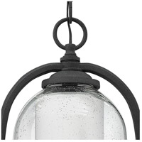 Hinkley 2612DZ Quincy 1 Light 9 inch Aged Zinc Outdoor Hanging Light in Incandescent, Seedy Outer Glass alternative photo thumbnail