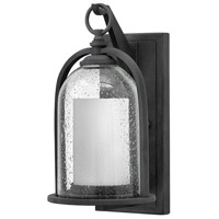 Quincy LED 14 inch Aged Zinc Outdoor Wall Mount, Seedy Outer Glass