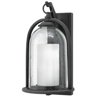 Quincy LED 17 inch Aged Zinc Outdoor Wall Mount, Seedy Outer Glass
