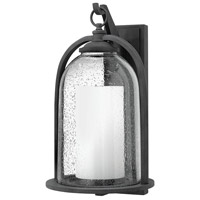 Quincy LED 20 inch Aged Zinc Outdoor Wall Mount, Seedy Outer Glass