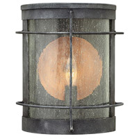 Hinkley 2620DZ Newport 1 Light 9 inch Aged Zinc Outdoor Wall Lantern, Clear Seedy Glass