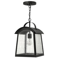 Putney Bridge 1 Light 10 inch Black Outdoor Hanging, Seedy Glass