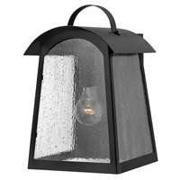 Hinkley 2654BK Putney Bridge 1 Light 13 inch Black Outdoor Wall, Seedy Glass