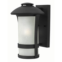 Hinkley Lighting Chandler 1 Light Outdoor Wall in Black 2704BK-GU24