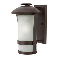 Hinkley Lighting Chandler 1 Light Outdoor Wall Lantern in Anchor Bronze with Etched Seedy Glass 2704AR-LED