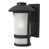 Hinkley Lighting Chandler 1 Light Outdoor Wall Lantern in Black with Etched Seedy Glass 2704BK-LED
