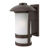 Hinkley Lighting Chandler 1 Light Outdoor Wall Lantern in Anchor Bronze with Etched Seedy Glass 2705AR-LED