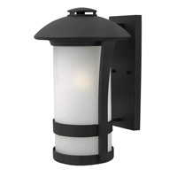 Hinkley Lighting Chandler 1 Light Outdoor Wall Lantern in Black with Etched Seedy Glass 2705BK-LED