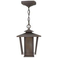 Theo LED 8 inch Oil Rubbed Bronze Outdoor Pendant