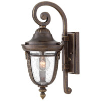 Key West 1 Light 16 inch Regency Bronze Outdoor Wall Mount in Incandescent, Clear Seedy Glass