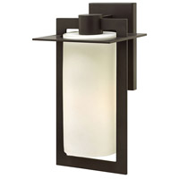 Colfax 1 Light 15 inch Bronze Outdoor Wall Mount in Incandescent, Etched Opal Glass