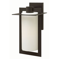 Colfax 1 Light 19 inch Bronze Outdoor Wall in Etched Seedy, GU24, Etched Opal Glass