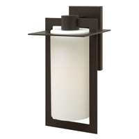 Colfax LED 19 inch Bronze Outdoor Wall Mount in Etched Opal, Etched Opal Glass