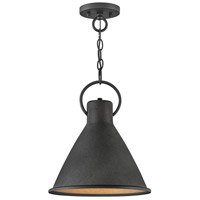Hinkley 3557DZ Winnie 1 Light 12 inch Aged Zinc with Distressed Black Accents Pendant Ceiling Light