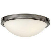 Hinkley Lighting Maxwell 2 Light Flush Mount in Antique Nickel with Etched Opal Glass 3782AN