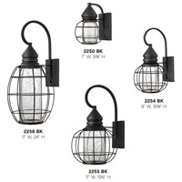 Hinkley 2258BK New Castle 1 Light 24 inch Black Outdoor Wall Mount, Seedy Glass alternative photo thumbnail