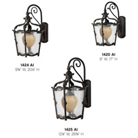 Hinkley 1425AI Sorrento 1 Light 27 inch Aged Iron Outdoor Wall Mount in Clear Seedy and Optic Etched Amber alternative photo thumbnail