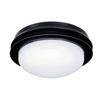 Marine II 2 Light Textured Black Fan Light Kit