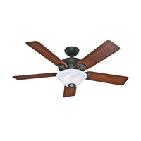 Hunter Fans The Brookline 2 Light Indoor Ceiling Fan in New Bronze 53111