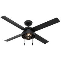 Hunter Fan 50336 Spring Mill 52 inch Matte Black Outdoor Ceiling Fan photo thumbnail
