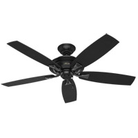 Hunter Fan 53348 Rainsford 52 inch Matte Black Outdoor Ceiling Fan  photo thumbnail