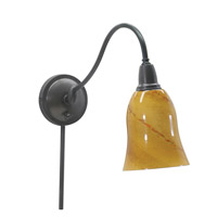 House of Troy Hyde Park 1 Light Swing-Arm Wall Lamp in Oil Rubbed Bronze HP725-OB-AG