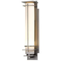 Hubbardton Forge 307860-1027 After Hours 1 Light 20 inch Coastal Burnished Steel Outdoor Sconce
