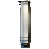 Hubbardton Forge 307880-1009 After Hours 1 Light 40 inch Coastal Burnished Steel Outdoor Sconce Extra Large