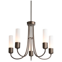 Hubbardton Forge 362005-1018 Portico 5 Light 23 inch Coastal Bronze Outdoor Pendant