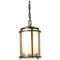 Hubbardton Forge 365610-1009 Meridian 1 Light 8 inch Coastal Burnished Steel Outdoor Hanging Lantern