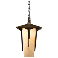 Modern Prairie 1 Light 9 inch Coastal Burnished Steel Outdoor Pendant, Large