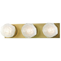 Hudson Valley 4183-AGB Nimbus LED 17 inch Aged Brass Bath Vanity Wall Light