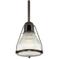 Hudson Valley Lighting Haverhill 1 Light Pendant in Old Bronze 7308-OB