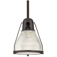Hudson Valley Lighting Haverhill 1 Light Pendant in Old Bronze 7311-OB