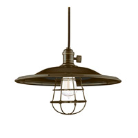 Hudson Valley Lighting Heirloom 1 Light Pendant in Old Bronze with Wire Bulb Guard 8002-OB-MM2-WG