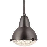 Hudson Valley Lighting Belmont 1 Light Pendant in Old Bronze 8117-OB