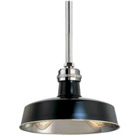 Hudson Falls 2 Light 15 inch Black and Polished Nickel Pendant Ceiling Light in Black Polished Nickel