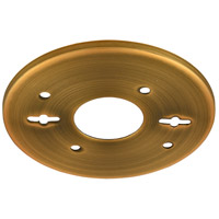Signature Brushed Brass Backplate