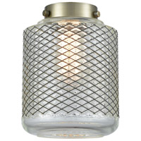 Innovations Lighting G262 Stanton Clear Wire Mesh 8 inch Glass