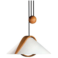 Domus 2 Light 22 inch Pendant Ceiling Light