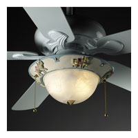 Kids Room 2 Light Fan Light Kit