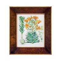 John Richard Botanical/Floral Wall Decor Giclees in Wood Tone GBG-0577A