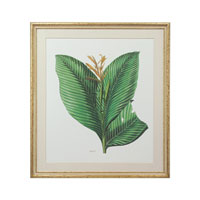 John Richard Botanical/Floral Wall Decor Giclees GBG-0582B