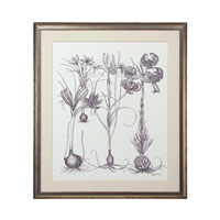 John Richard Botanical/Floral Wall Decor Giclees GBG-0584B