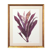 John Richard Botanical/Floral Wall Decor Giclees in Gold GBG-0586