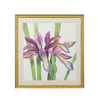 John Richard Botanical/Floral Wall Decor Giclees GBG-0588