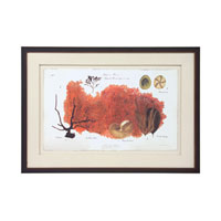 John Richard Coastal Wall Decor Giclees in Copper GBG-0591E