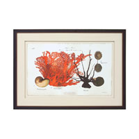 John Richard Coastal Wall Decor Giclees in Copper GBG-0591F